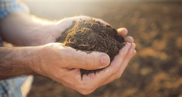 Análise de solos no Brasil vai contar com tecnologia usada pela Nasa