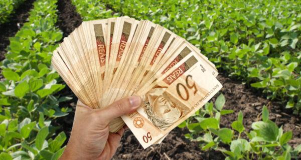 Aplicação do crédito rural alcança R$ 117,6 bilhões em alta de 13%