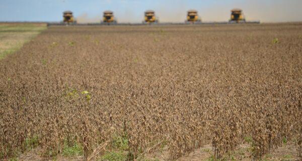 Abiove eleva previsão para a safra 2017/18 de soja do Brasil