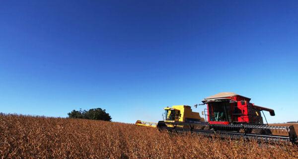 Farelo de soja e celulose são destaques nas vendas externas em abril
