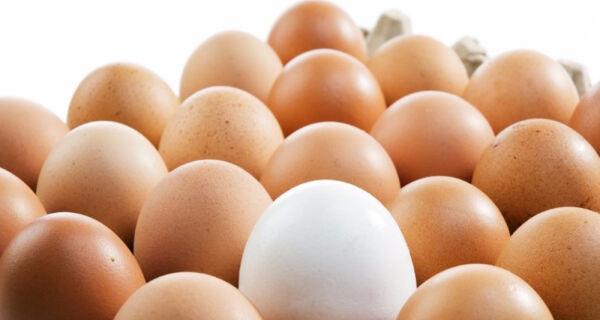 Mercado de ovos opera com forte valorização nesta semana