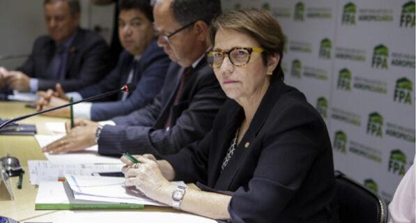 FPA analisa decisão do STF sobre constitucionalidade do Funrural