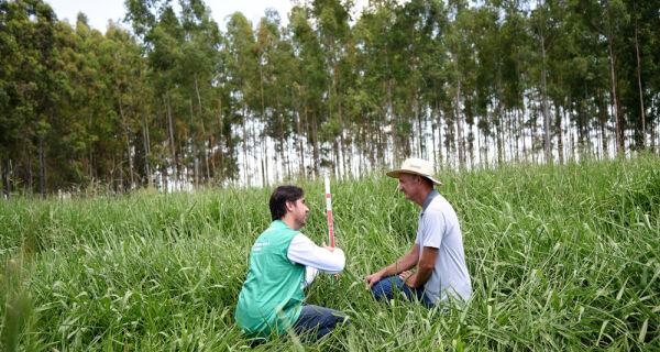 Em seis anos, assistência técnica do Senar/MS inovou mais de 57 mil hectares