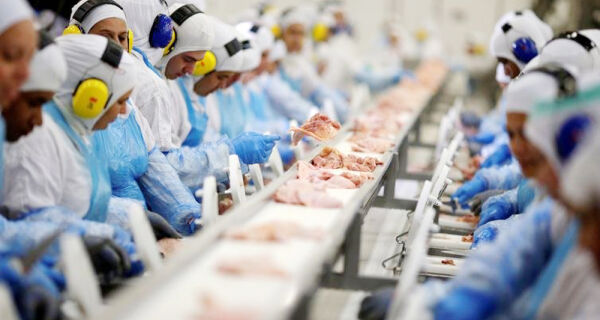 Instrução Normativa agiliza registro de produtos cárneos