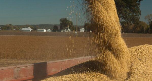 Exportadores de soja dos EUA relatam vendas de 114,3 mil toneladas para o México