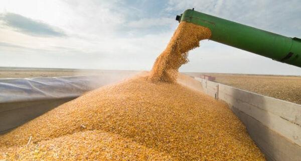 Queda nos embarques brasileiros de milho em maio