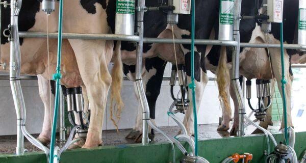 Após greve, oferta de leite no Brasil deve recuar 9%