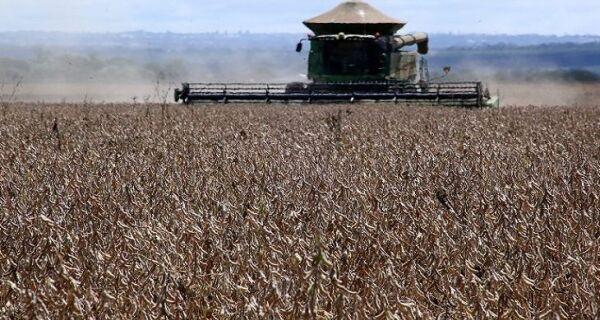 MS tem a 5ª maior produção de grãos do País