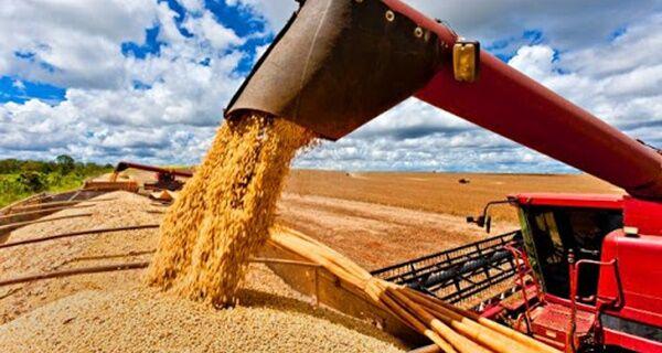 Safra de grãos de 2019/20 deve alcançar recorde histórico de 257,8 milhões de toneladas