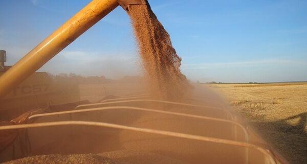 Mercado aposta em subida de preços de grãos e China mantém compras