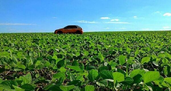 Safra de soja avança com 90% das lavouras em boas condições e mais da metade já comercializada