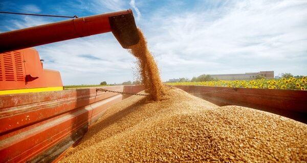 Produção brasileira de grãos deve chegar a 268,3 milhões de toneladas
