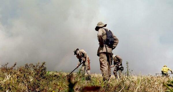 Governo institui Plano Estadual de Manejo Integrado para prevenir e combater incêndios florestais