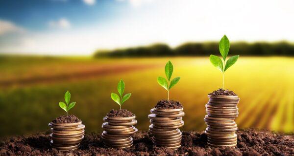 Sicredi disponibiliza R$ 38,2 bilhões para safra 2021/2022