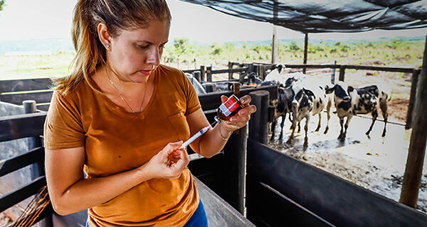CNA discute panorama trabalhista e previdenciário no Agro