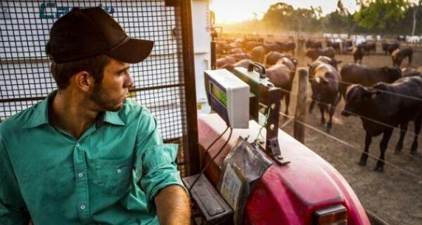 Entre janeiro e julho, agropecuária teve participação de 11% na geração de empregos