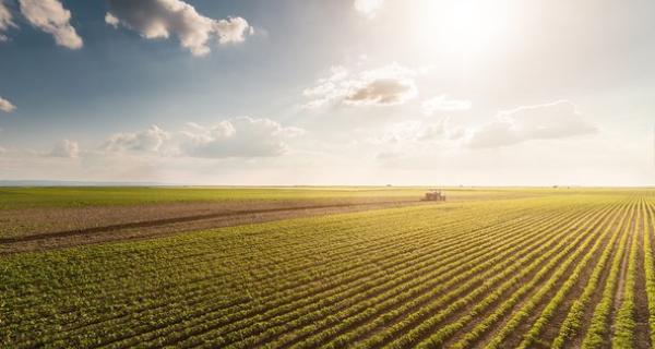 Contratação do crédito rural tem desempenho recorde